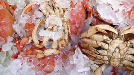 Crab083